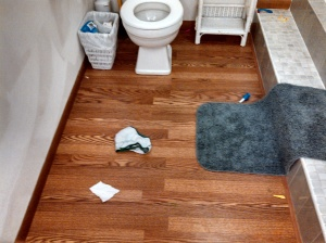 "My ""clean house"" tonight. Just one pair of used undies on the bathroom floor. Yay! Let's eat in here!"